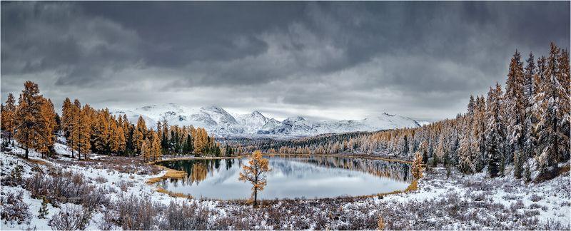 алтай,озеро,осень,золотая,горы,лиственница,вода Алтай.Киделю.photo preview