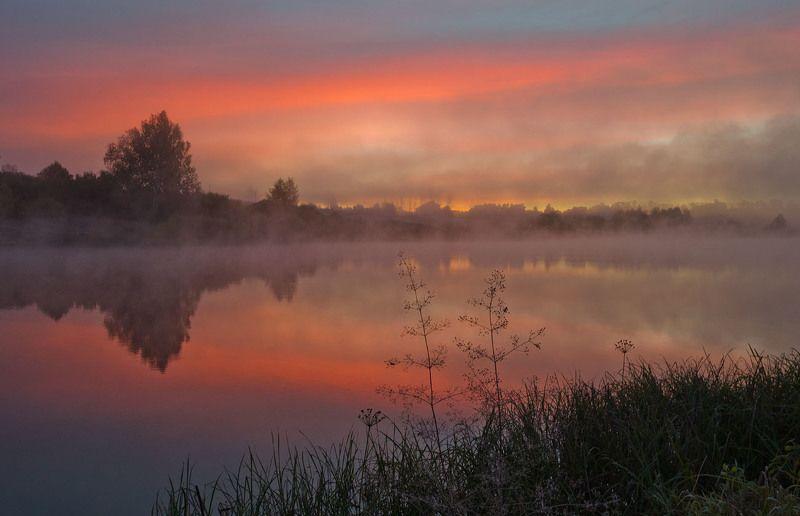 утро, рассвет, архангельское Рассветная темаphoto preview