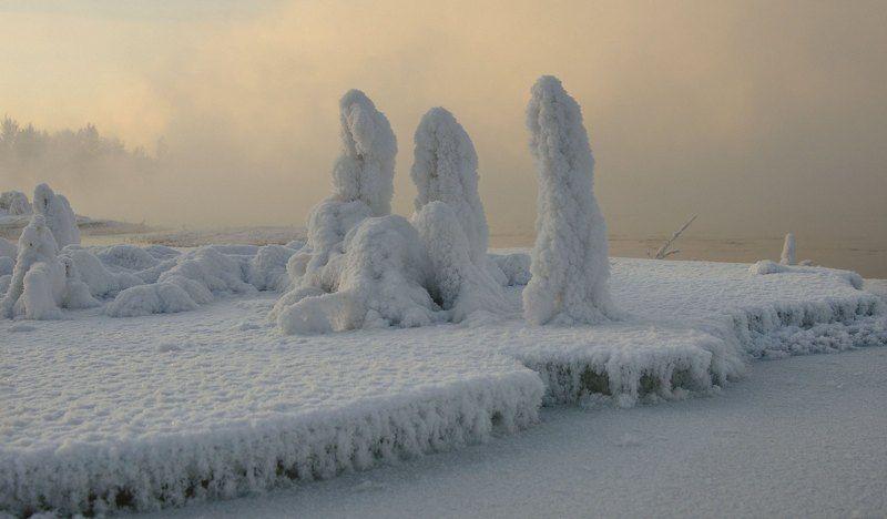 Зимние суслики.photo preview