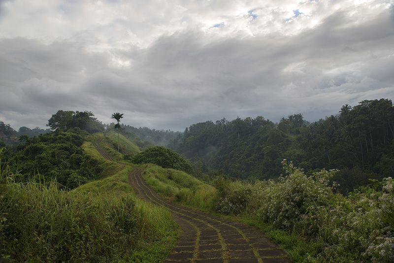 бали, индонезия, пейзаж, экзотика Тропа Художниковphoto preview