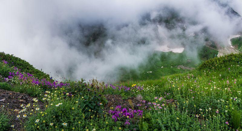 Pro летние цветные сны...photo preview