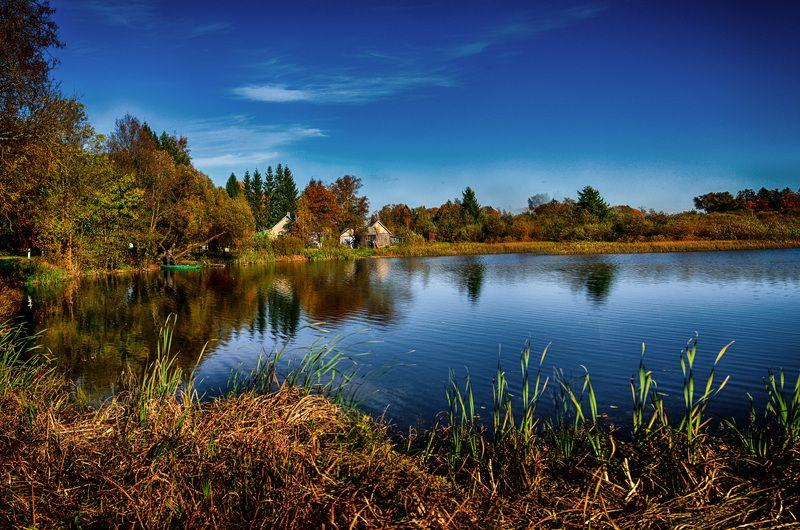 отражения, вода, природа Размышления в водеphoto preview