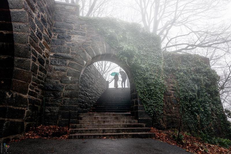 Декабрьский туманphoto preview
