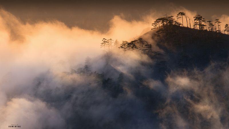 крым, ялта, ай-петри, иограф, яйла, хребет, рассвет, горы, облака, сосны, landscape, crimea, clouds, mountain, dawn. Японские мотивы Иографа.photo preview
