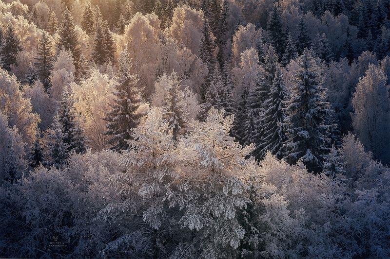 Зимнее кружевоphoto preview