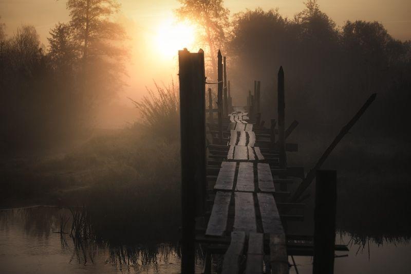 river, morning, sunrise, bridge, nature, sun, Morning On The Riverphoto preview