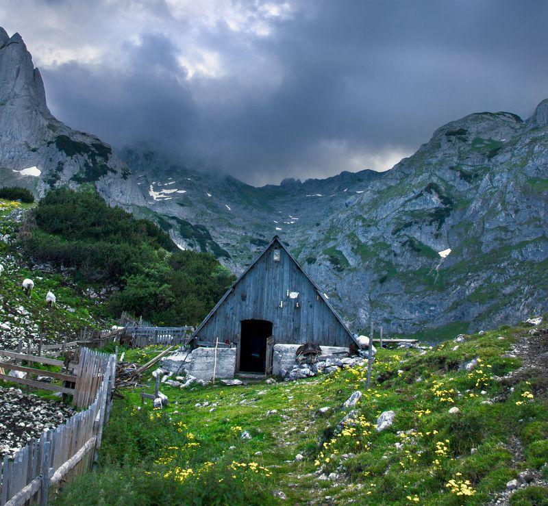 montenegro, durmitor, mountain, hut, wooden, lodge, черногория, дурмитор, гора, хижина, деревянная, домик, Mountain lifephoto preview