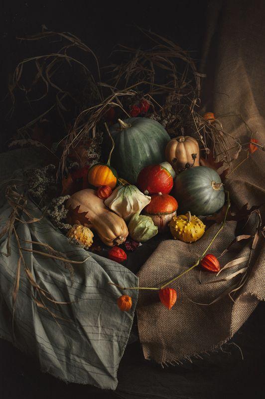 тыквы, натюрморт, осень ***photo preview