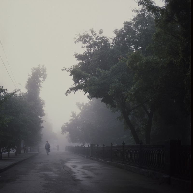 fog, film, novosibirsk Foggy Parkphoto preview