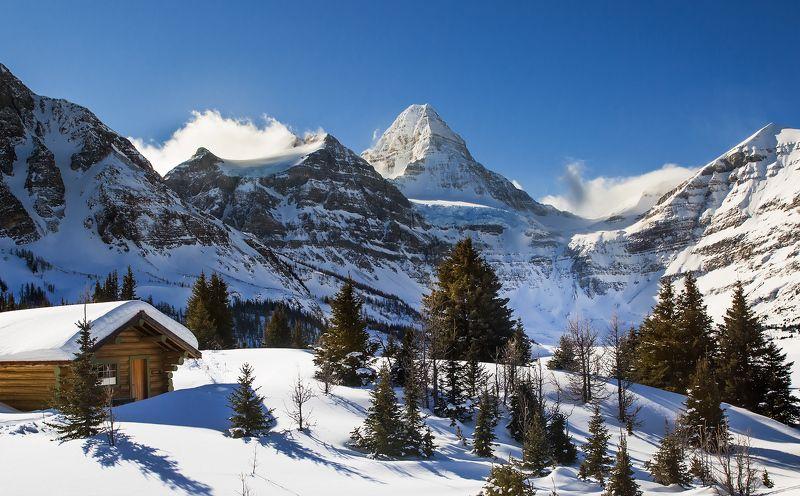assiniboine, sunny, snow, peak, mountain Морозно снежноеphoto preview
