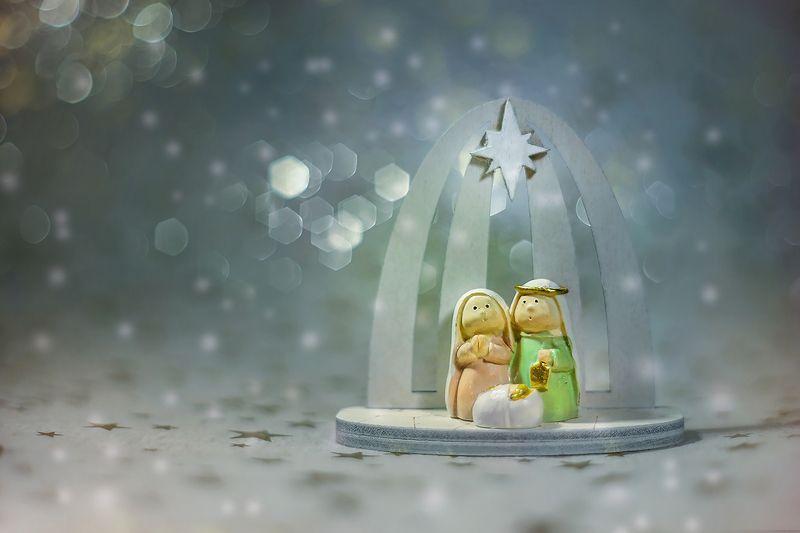 christmas, macro, snow, Merry Christmas Everyonephoto preview