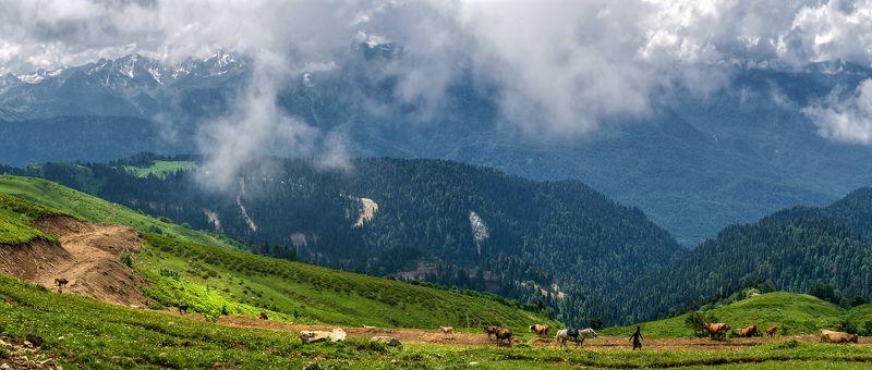 Утро в горах Красной поляныphoto preview