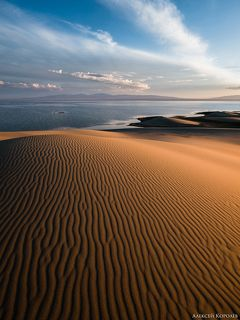 Золото Монголии 3