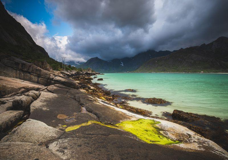 lofoten,norway,sea,colours,flakstadpollen,norwegian,scandinavia,scandinavian,water,north,summer,summertime,amazing,shore,shoreline, Lofoten coloursphoto preview