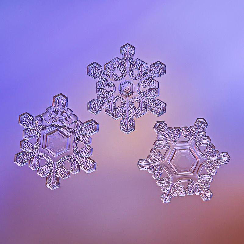 снежинка, снежинки, макро, природа, кристалл, зима Триоphoto preview