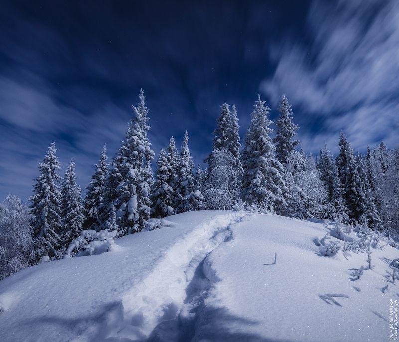 ночь, зима, мороз, снег, лес, тропа, пермский край Ночной лесphoto preview