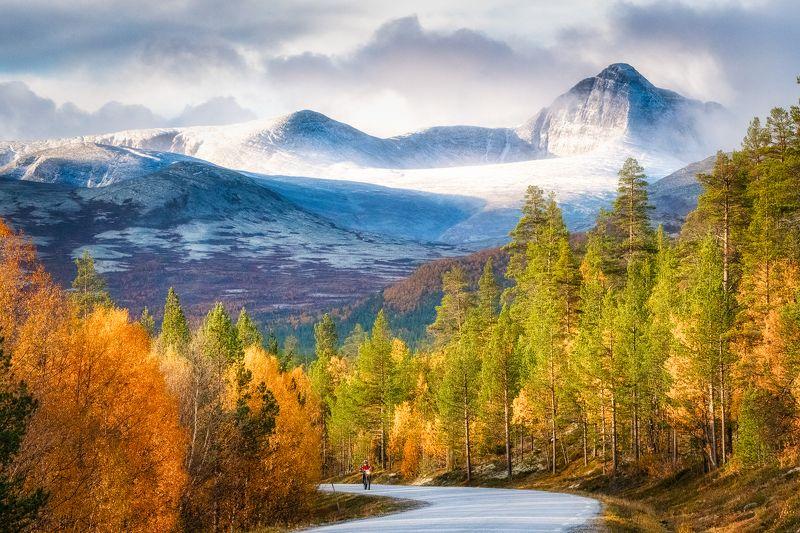 autumn, color, dream Autumn color naturephoto preview