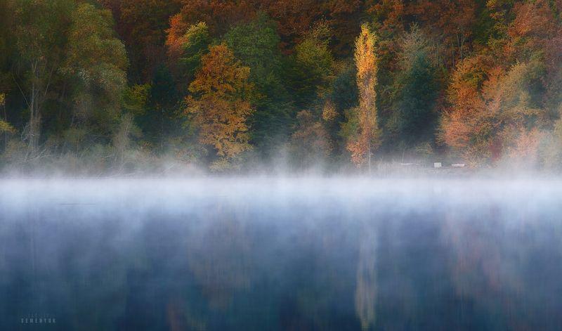 крым, богатырь, бойка, озеро, рассвет, туман, тополь, lake, fog, mood, landscape. Один.photo preview