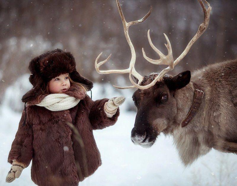 олень, рождество, дети, зима, сказка, лес, снег Встреча в лесуphoto preview