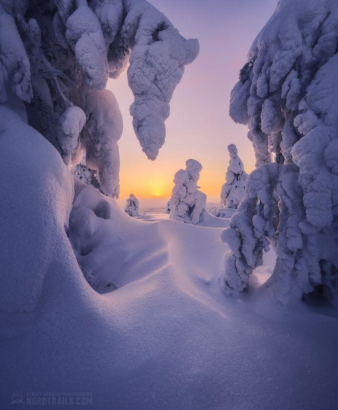 кольский, кольский полуостров, кандалакша, зима, winter, snow, north На закате дняphoto preview