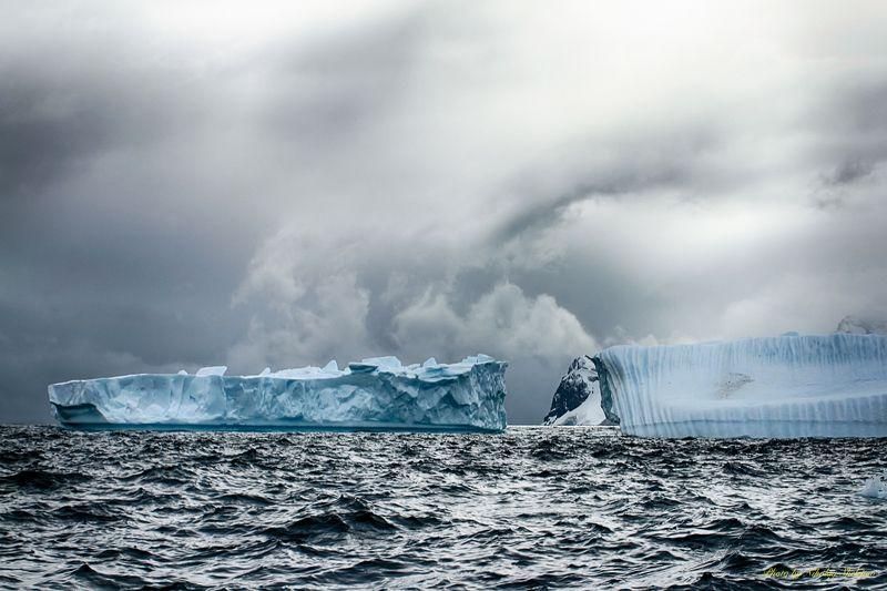 Антарктида 37photo preview