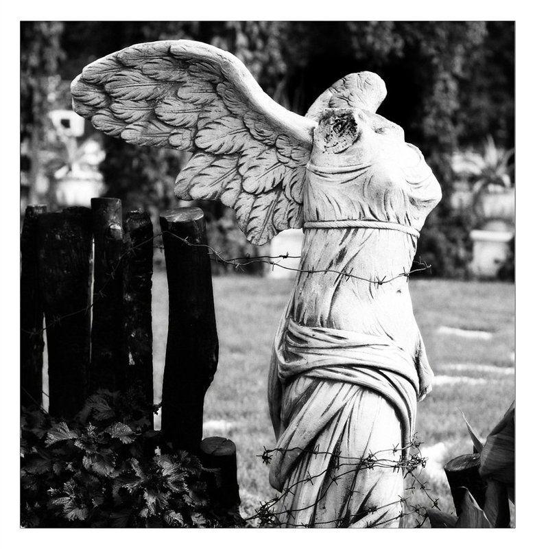 Оковы ангелаphoto preview