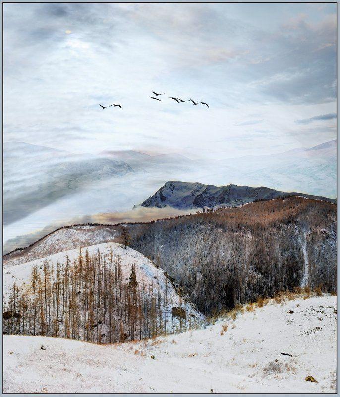 мажой, осень,снег,горы. Беловодье...(Блюз уходящей осени..).photo preview