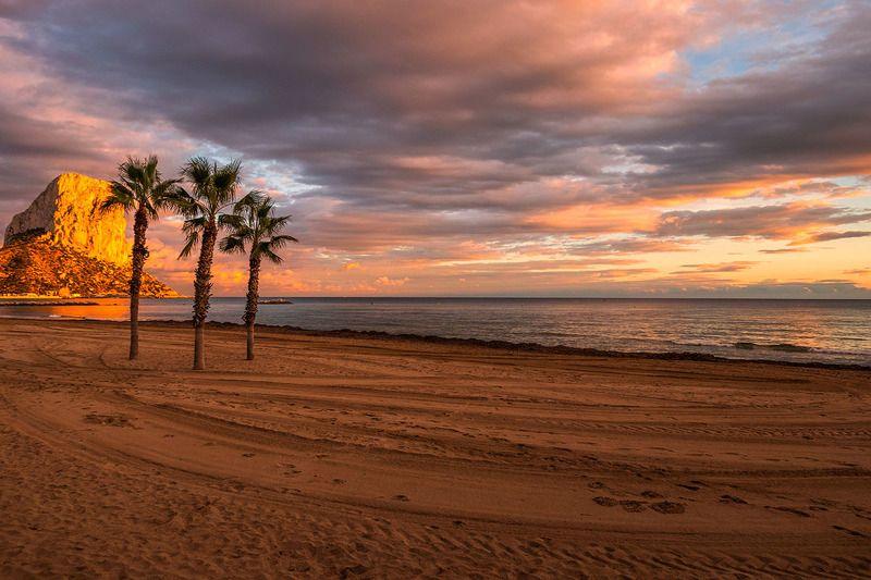 Вечер в Испанииphoto preview