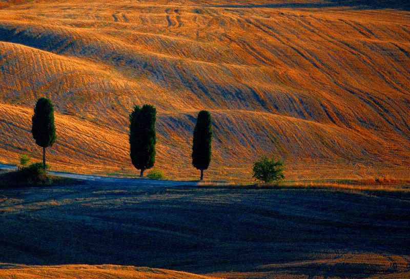 tuscany,italy,landscape, Tuscanyphoto preview