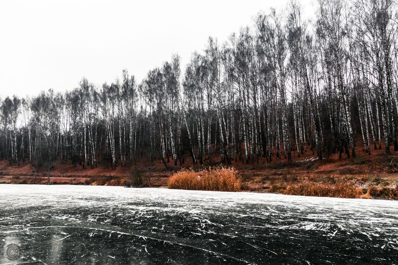 лед, береза, снег, озеро, вода, зима, трава, дерево, небо, пейзаж Зимний колизей...photo preview