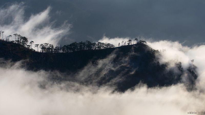 крым, горы, иограф, ялта, рассвет, туман, хребет, облака, настроение, crimea, ridge, mountain, clouds, fog, landscape. Дракон погружается.photo preview