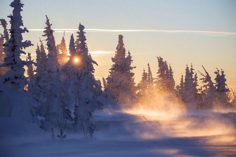 шерегеш, снег, ветер, метель, мороз, горы, деревья, пейзаж, природа, закат, снежинки Игры Солнца и ветра! Шерегешphoto preview