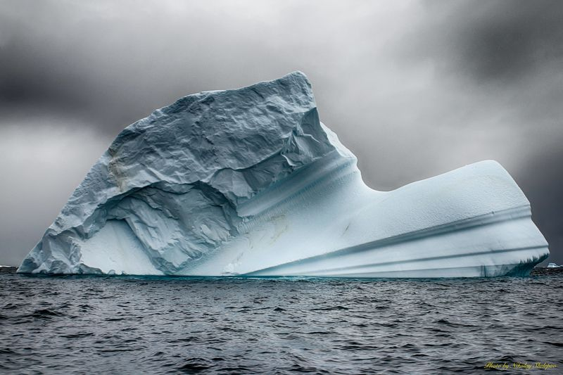 Антарктида 38photo preview