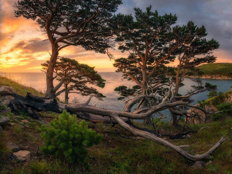 приморский край море солнце рассвет владивосток заповедник скалы photo preview