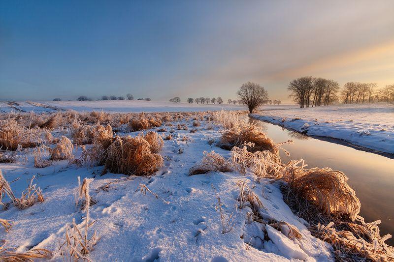 Frosty morning фото превью
