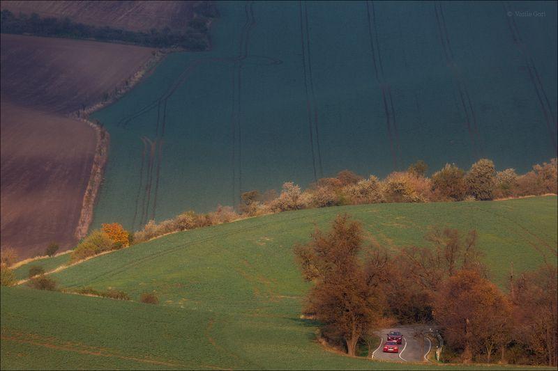 южная моравия,пейзаж,автомобиль,деревья,линии,south moravian,lines,свет,czech,осень,косули,чехия,landscape \