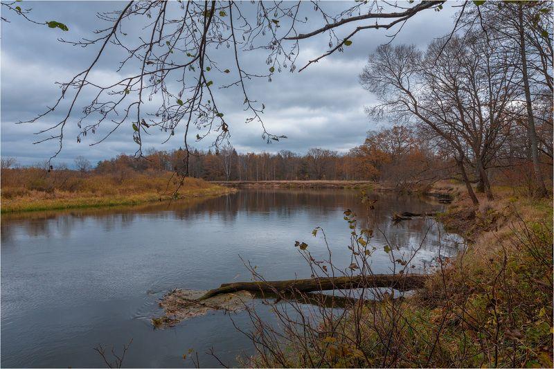 Осернь, река Березина Осенние зарисовкиphoto preview