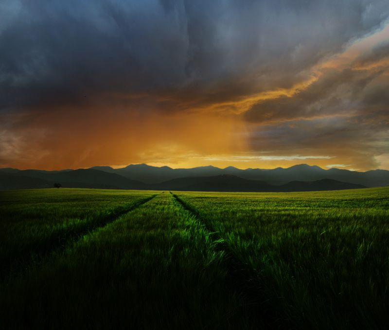 grass,field,sun, clouds,mountains *photo preview