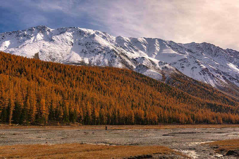 актру, северо-чуйский, алтай, горный алтай, осень, осень, закат Вечер в Актру...photo preview