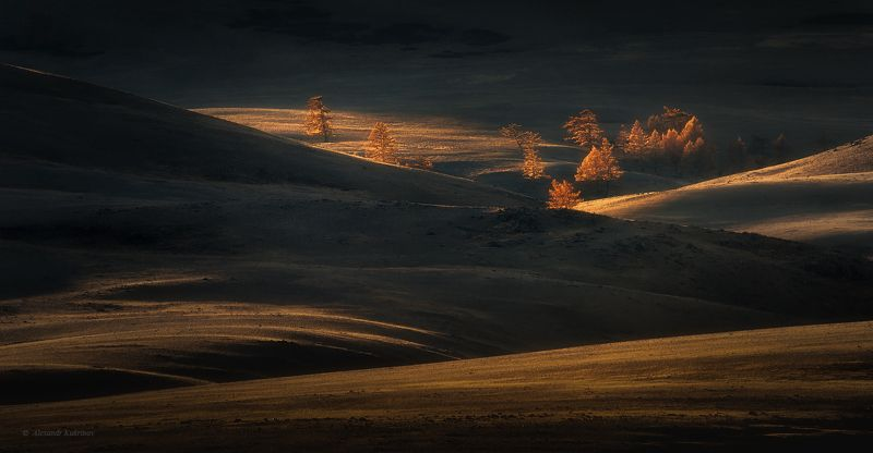 пейзаж, алтай, горы Утро в курайской степи...photo preview