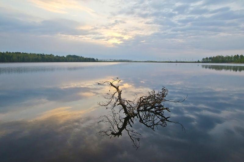 озеро, ласковое, пейзаж Озеро Ласковоеphoto preview
