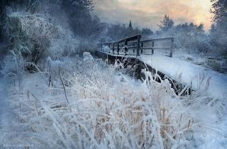 снежный декабрь 2018. Холмогоры