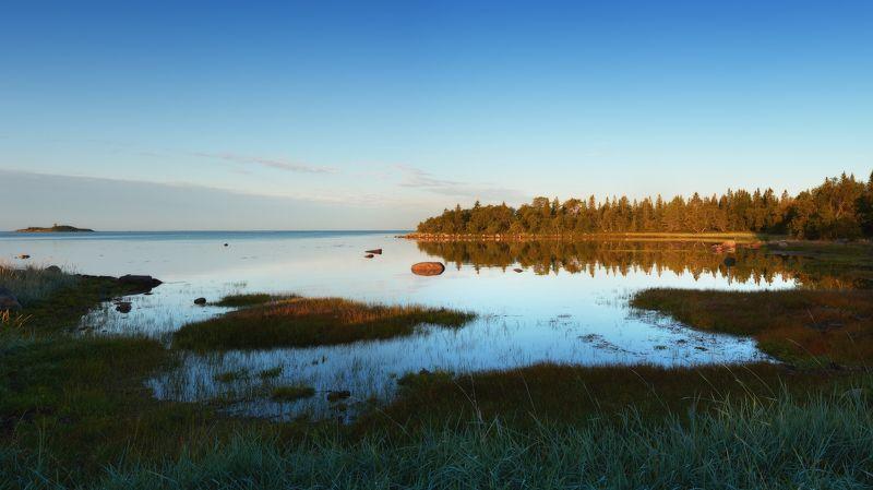 #dervod #drevo #Соловки Новая Сосновка, Соловецкий остров. Рассвет.photo preview