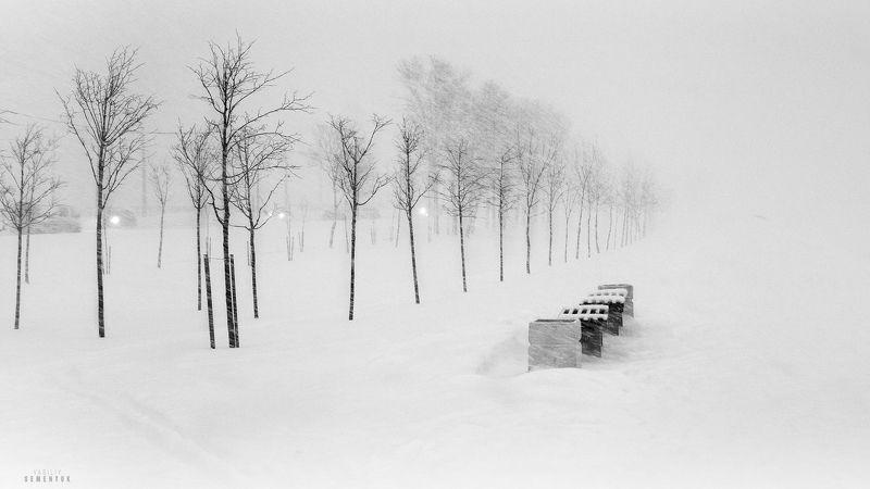 город, зима, минимализм, снегопад, настроение, b/w, city, winter, snowfall, mood. Ксерокопия Зимы.photo preview