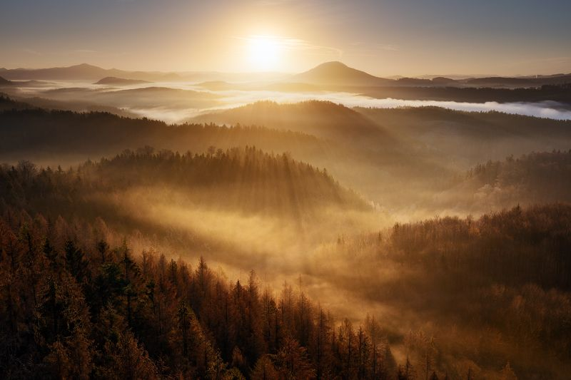 czech republic, bohemian switzerland, trees, fog, mist, morning, sky, beautiful, europe, hills, horizons, layers, valleys Golden Decemberphoto preview