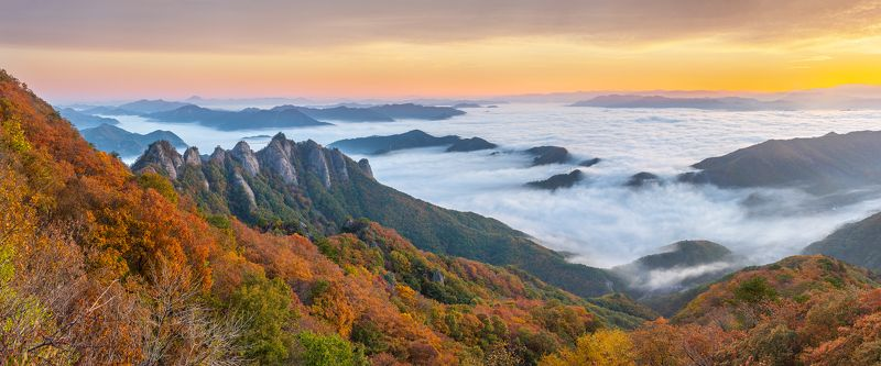 sea of clouds, autumn, clouds, mountain, korea, rock formation, sunrise Autumn of Gubongsanphoto preview