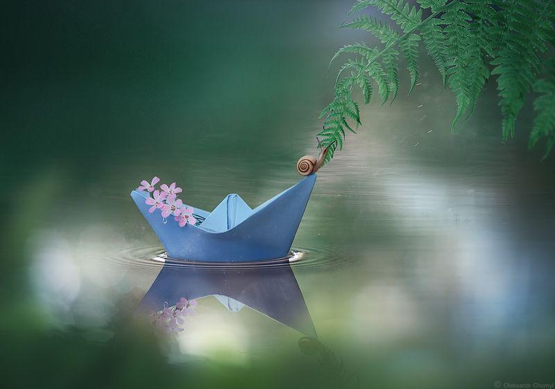 украина, коростышев, природа, макро, макро красота, макро мир, волшебство, кораблик, улитка, нежность, тишина, гармония, жизнь, свобода, надежда, любовь, путь, путешествие,  мир, \