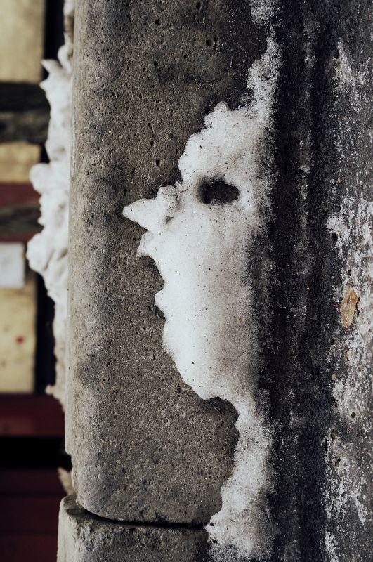 Снежные  головыphoto preview