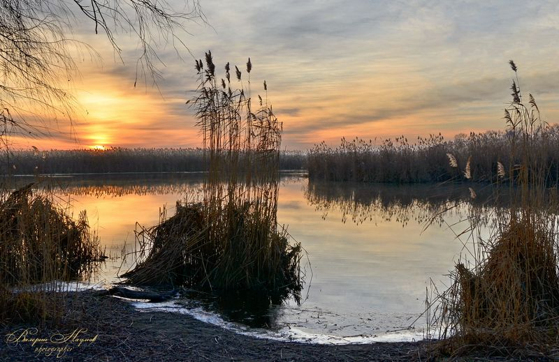 утро, рассвет, река, восход, зима, январь, плавни, камыш Январский рассвет в плавняхphoto preview
