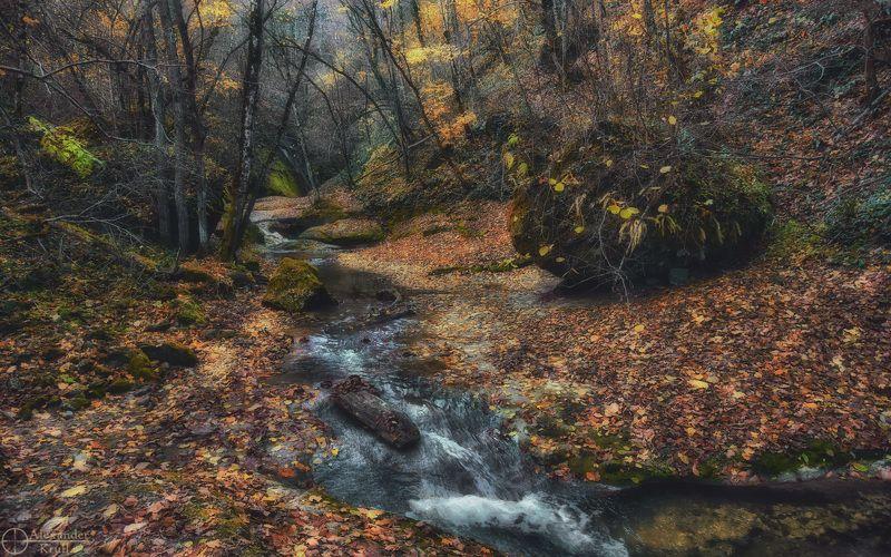 Осенняя прогулка...photo preview
